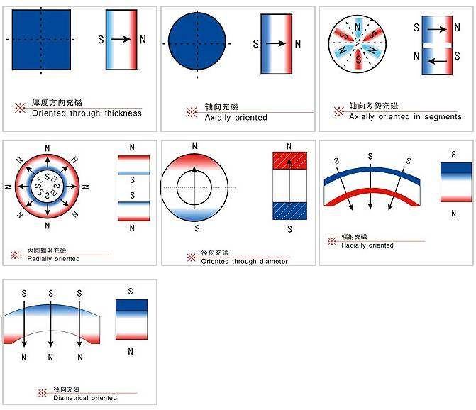 Magnetization Direction of Rare Earth Neodymium Magnets